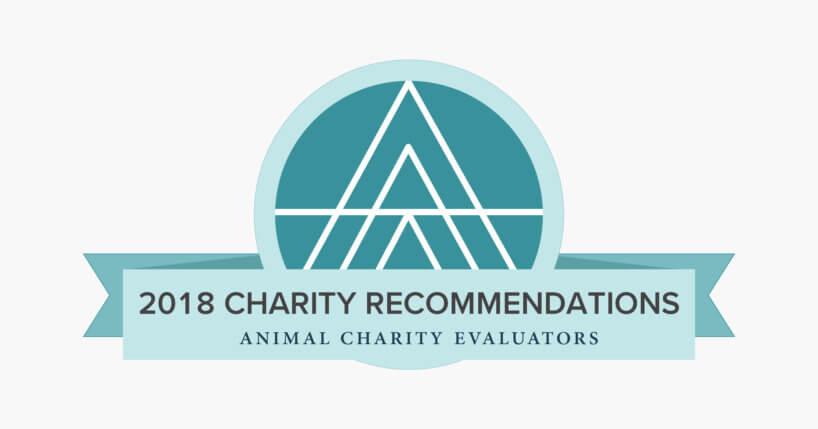 Recommended Charities Animal Charity Evaluators - charity evaluation