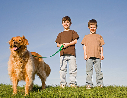 Собака для… дитини, квартири