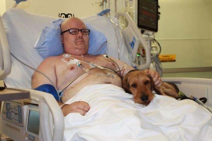 Як любов собак і котів рятує людей