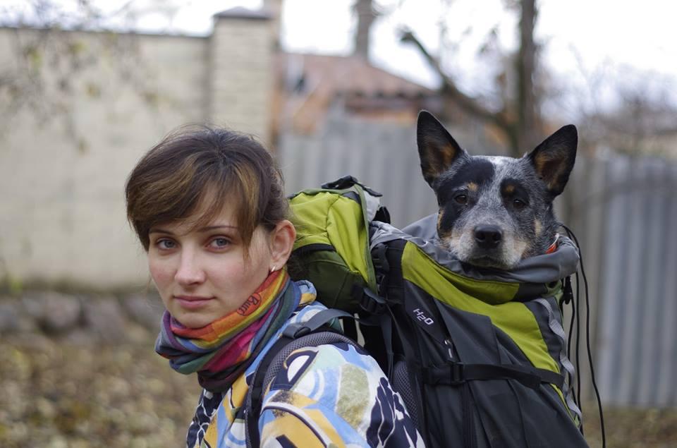 Подорож з собакою за кордон