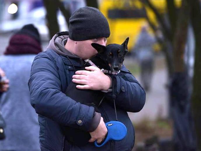 Міжнародний день тварин на майданчику Sport Dog Area