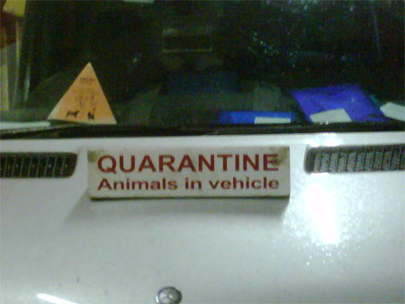 On the way to quarantine