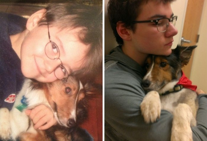 before-after-pets-growing-old-first-last-photos-4-577b77d6b9a01__700