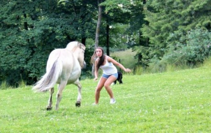 1-hilarious-fails-of-girls-and-animals