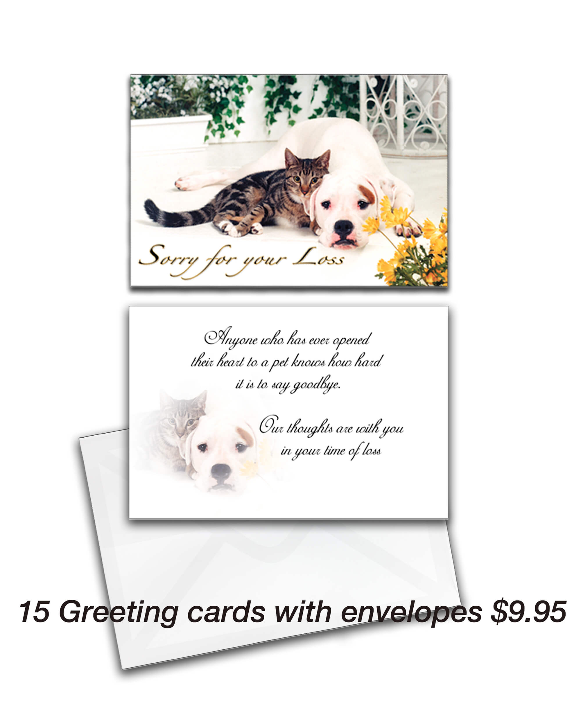 Sorry for your loss greeting card animal photography kristyandbryce Gallery