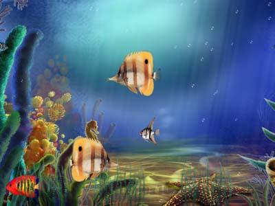 Download Fish Tank 3d Live Wallpaper Animated Aquarium Screensaver 1 0 Free Download