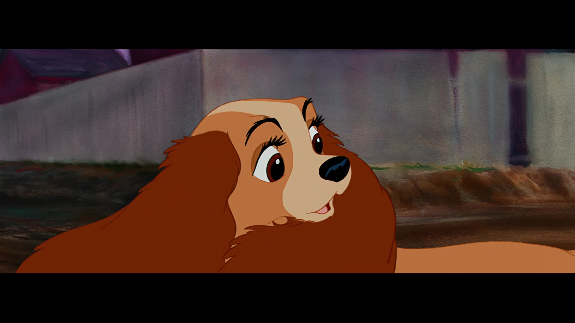 How Long Is Paint Good For The Lady And The Tramp Screenshots © Lady & The Tramp