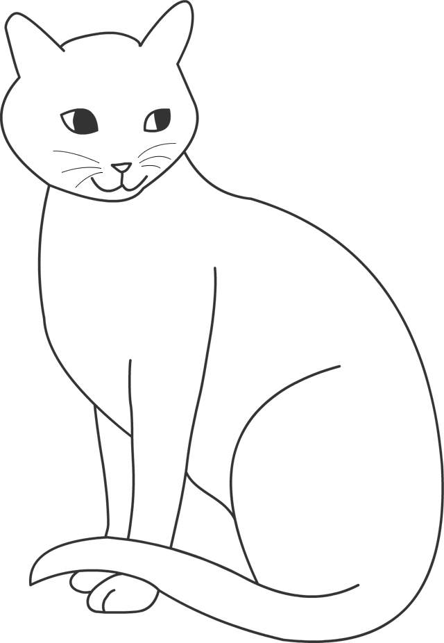 Dessin de chat - Coloriage des chats ...