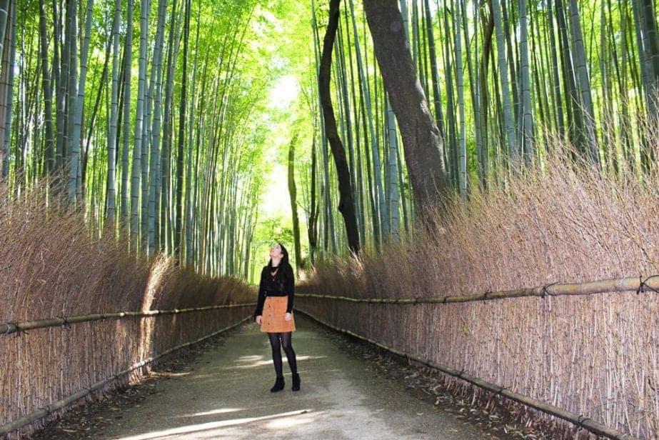 Green Forest Wallpaper Hd A Guide To Kyoto Japan Anita Hendrieka