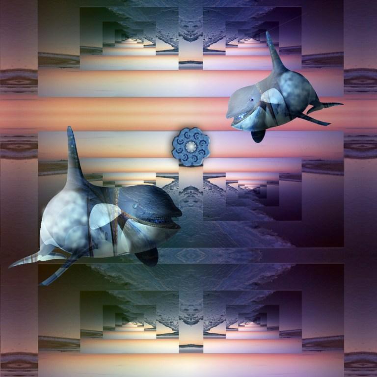 dolphins-annabellerock-lll