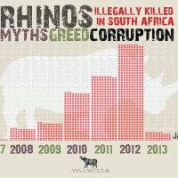 South Africa: 57 Rhinos Killed in 31 Days