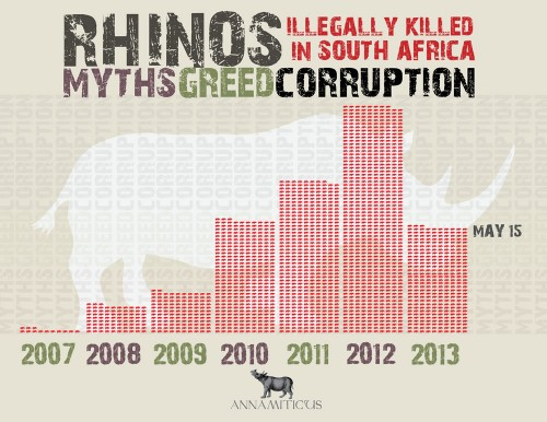 At least 313 rhinos have been killed in South Africa during the first 134 days of 2013. Image © Annamiticus
