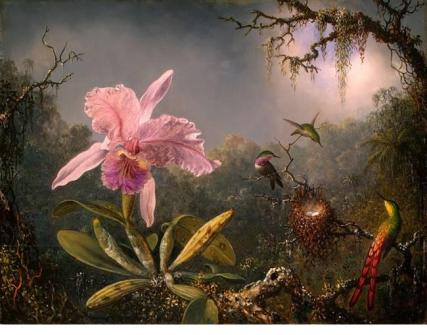 Martin Heade, Cattleya Orchid and Three Brazilian Hummingbirds, 1871, National Gallery of Art, Washington, D.C.