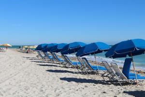 beach umbrella chairs