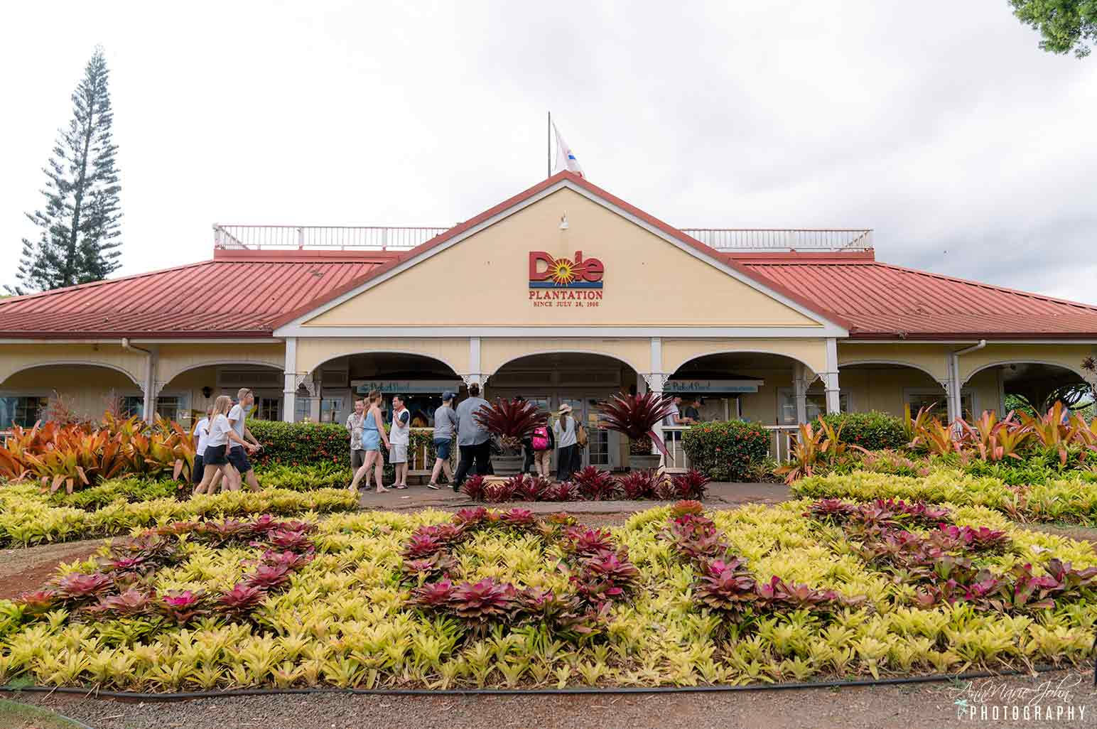 5 Things To Do At The Dole Plantation With Your Family Annmarie John