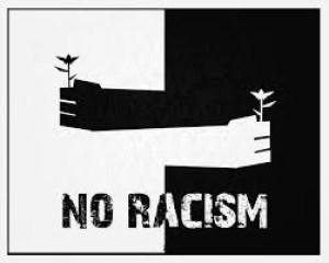 Acţiunea afirmativă ca rasism