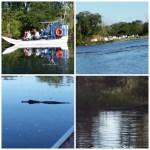 Louisiana Tour Company ~ Airboat Swamp Tour ~ #VisitJeffersonParish