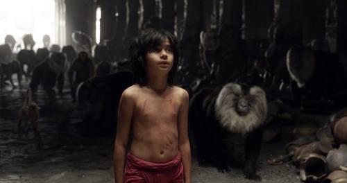 Cast Jungle Book