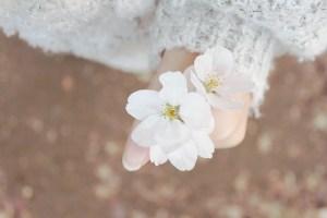 spring-632098_640