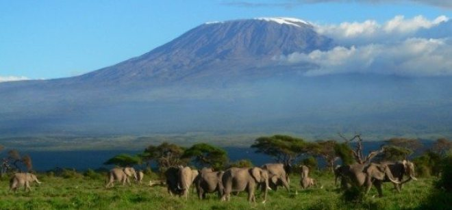 Amboseli Safari Kenya