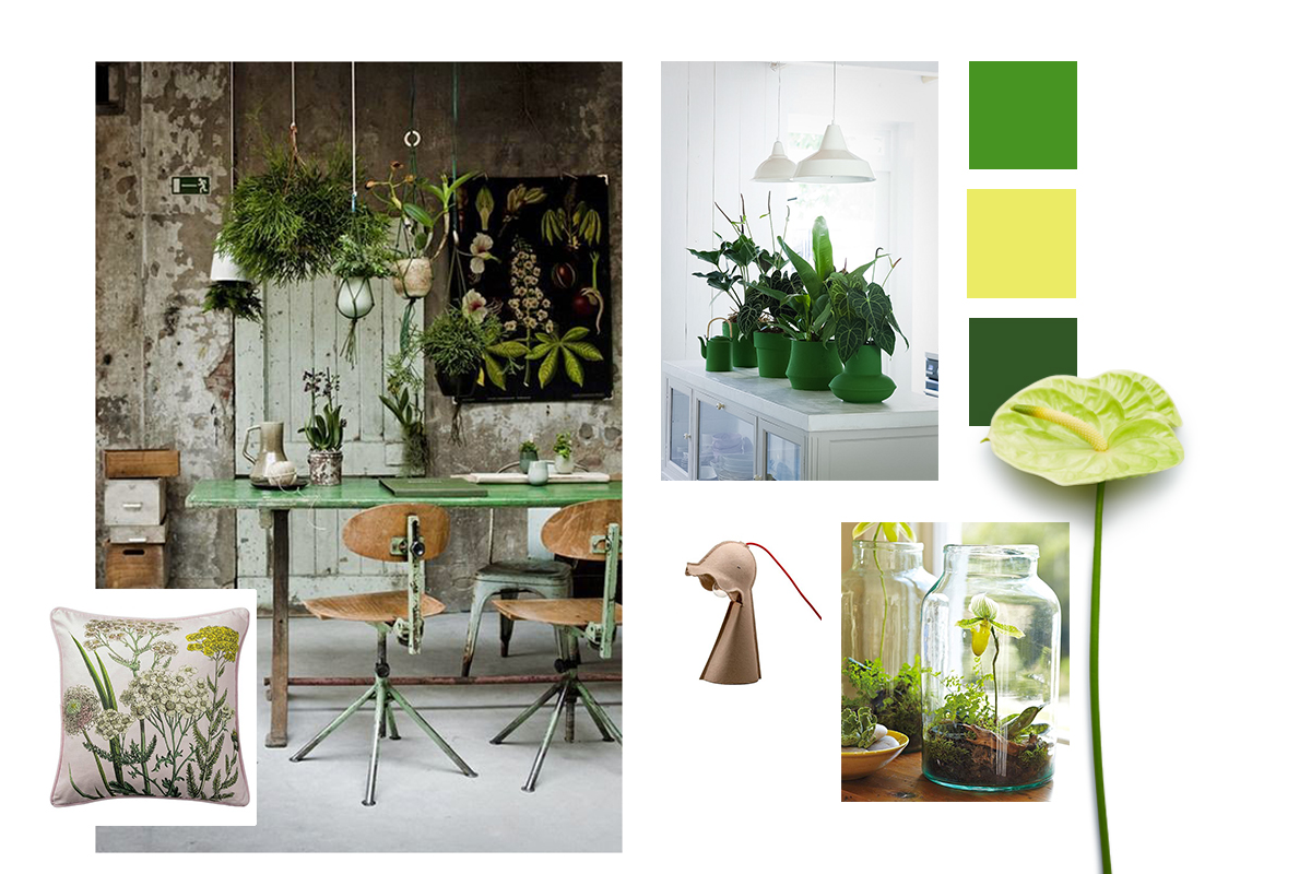 Urban Nature Interieur Go Green With The Urban Jungle Style Anthura