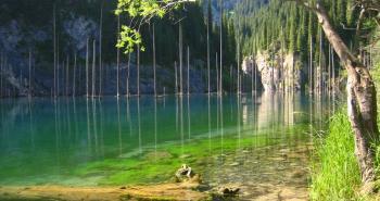 kaindy-lake-kazakhstan