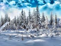 Τραγούδια του χειμώνα