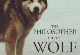 UK_Cover_Wolf