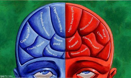 025471-political-brain