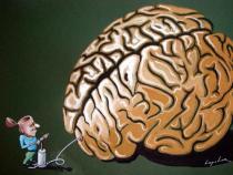 10 άγνωστες αλήθειες για τον εγκέφαλο