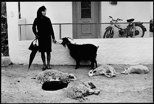 Γυναίκα με κατσίκα, δεκαετία 1960