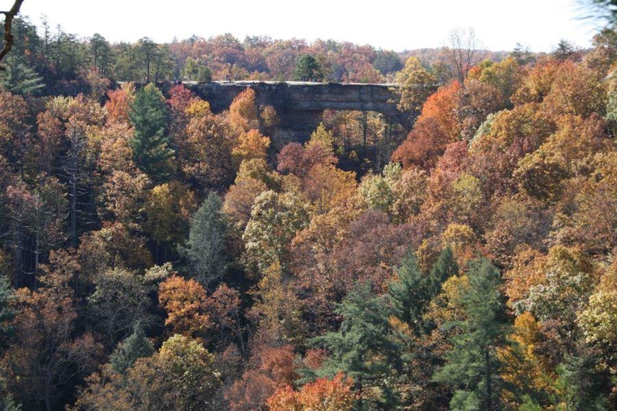 Natural Bridge (φυσική γέφυρα), ΗΠΑ