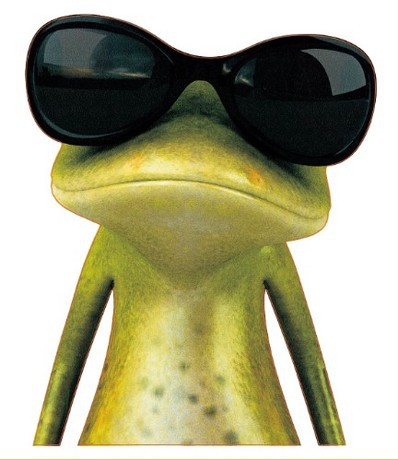 Crazy-frog-3D-glue-sticker-with-many-lovely-models-for-car-laptop-trunk