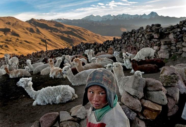 Μετά τον θάνατο του πατέρα του, ο εννιάχρονος Αλβάρο Κουίσπε βοηθάει την οικογένεια του να επιβιώσει φέροντας χρήματα στο σπίτι. Κάθε πρωί βγάζει τα ζώα της οικογένειας στο βουνό, πηγαίνει σχολείο και μόλις τελειώνει τρέχει για μία ώρα προκειμένου να προλάβει να τα βάλει μέσα. Σε αυτό το μέρος της Βολιβίας, οι άνθρωποι ζουν σε πολύ μεγάλο υψόμετρο και στα σπίτια τους δεν έχουν ηλεκτρισμό και κρεβάτια ενώ το νερό το μαζεύουν από τα χιόνια που λιώνουν. Η οικογένεια έχει 200 δολάρια εισόδημα τον χρόνο.