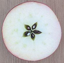Ένα μήλο κομμένο με συμμετρία.
