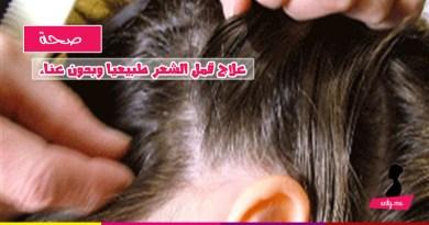 علاج قمل الشعر طبيعيا وبدون عناء
