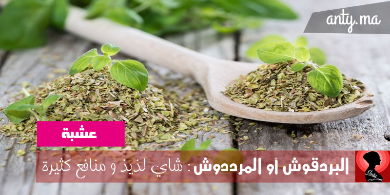 فوائد البردقوش أو المرددوش: شاي لذيذ و منافع كثيرة
