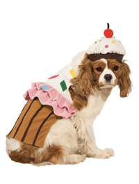 Halloween Dog Costumes Under $20 - An Unblurred Lady