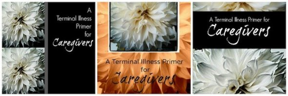 A Terminal Illness Primer for Caregivers Cover An Unrefined Vegan