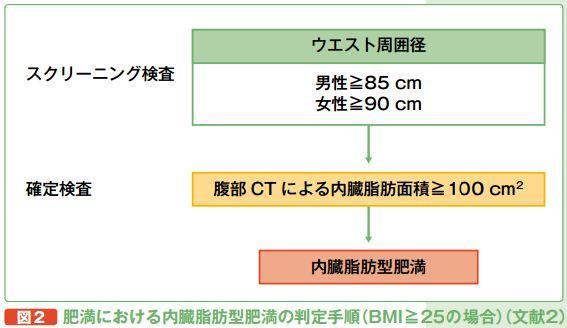 内臓脂肪型肥満の診断