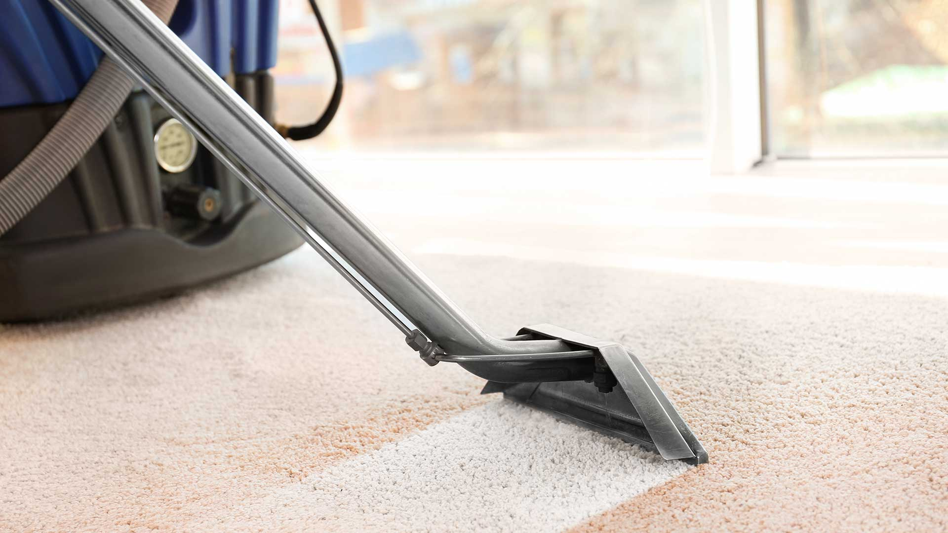 Floor Teppiche Carpet Cleaning Janitorial Services Lutz Wesley Chapel