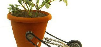 Plantomatic Image: Hungeree.com