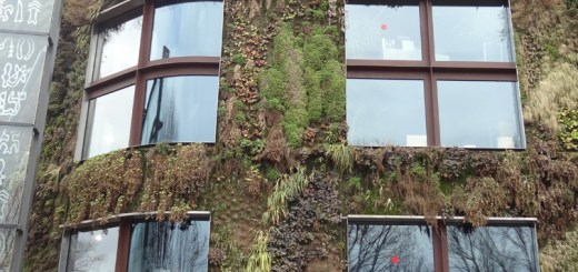 Wall plantings on an office along the South Bank, Paris