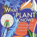 Cover of What A Plant Knows