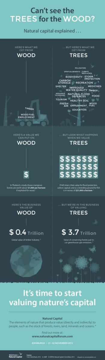 Natural Capital Infographic