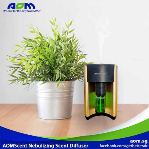Plant with AOMScent Nebulizing Diffuser