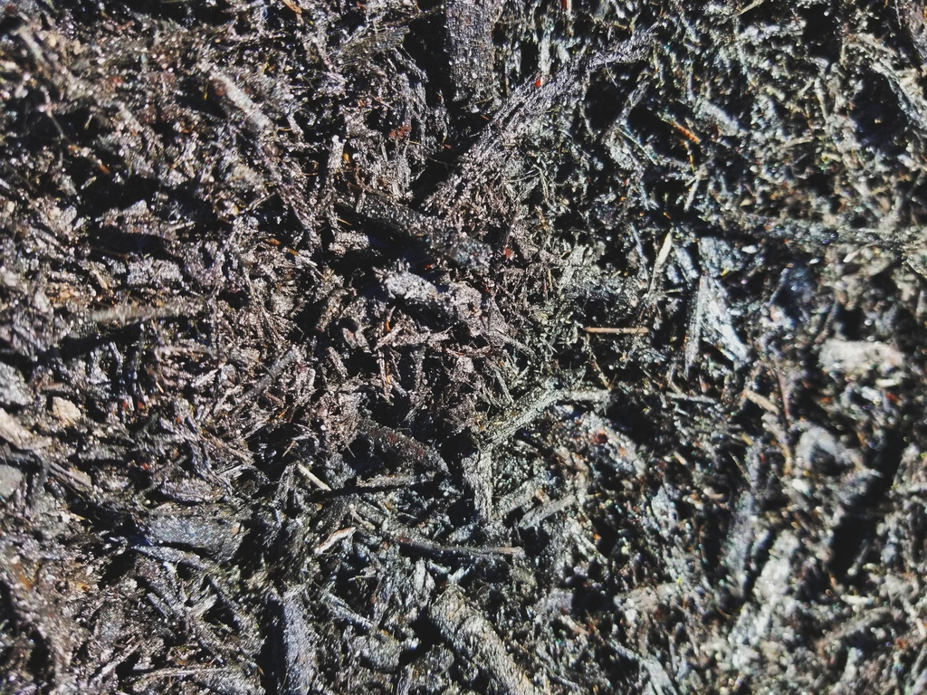 Black Bark Mulch Mulch Soils