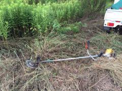 草刈りを実体験すると分譲太陽光の年間管理費は高いとは思えない?!