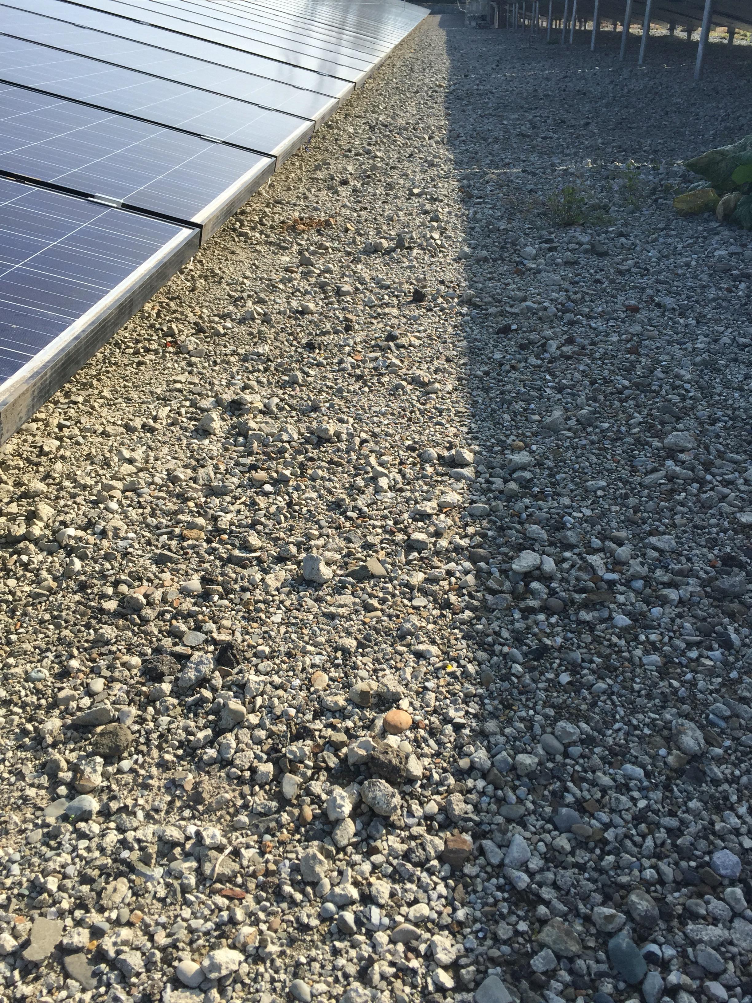 ひさびさの太陽光発電所の現地確認。気になる点が3点