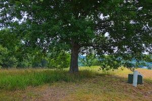 Riverside Ridge Ests Lot 7 A, Mammoth Spring, AR 72554 - Land For